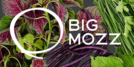 Dinner with the Big Mozz Team & Chef Aanna tickets