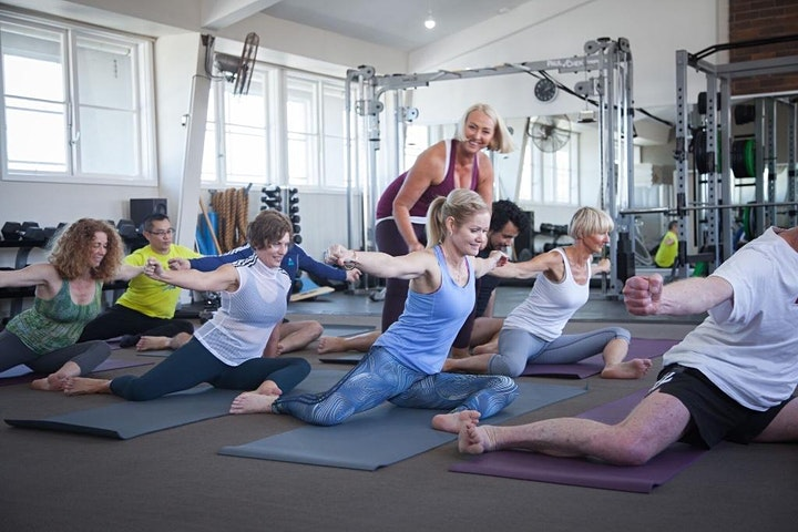 Posturefit beginner postural stability strength group class image