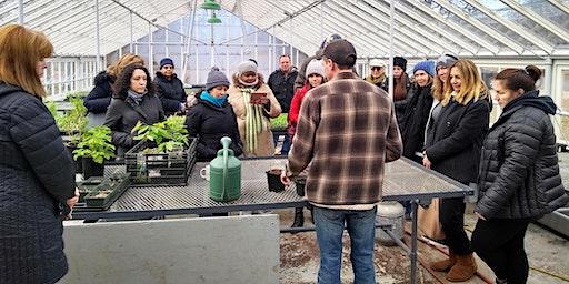 Planning Your Veggie Garden