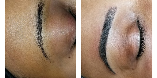 Microblading Plus Manual Shading