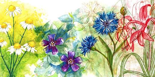 Workshop  - Zeichnen im Botanischen Garten - Kurs - Drawing in the Garden