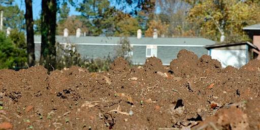 March Gardening 101: The Basics