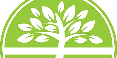 Emotionally Healthy Spirituality  8 week Course