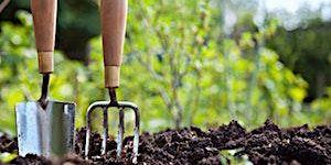 Home Organic Vegetable Gardening (Ulladulla)