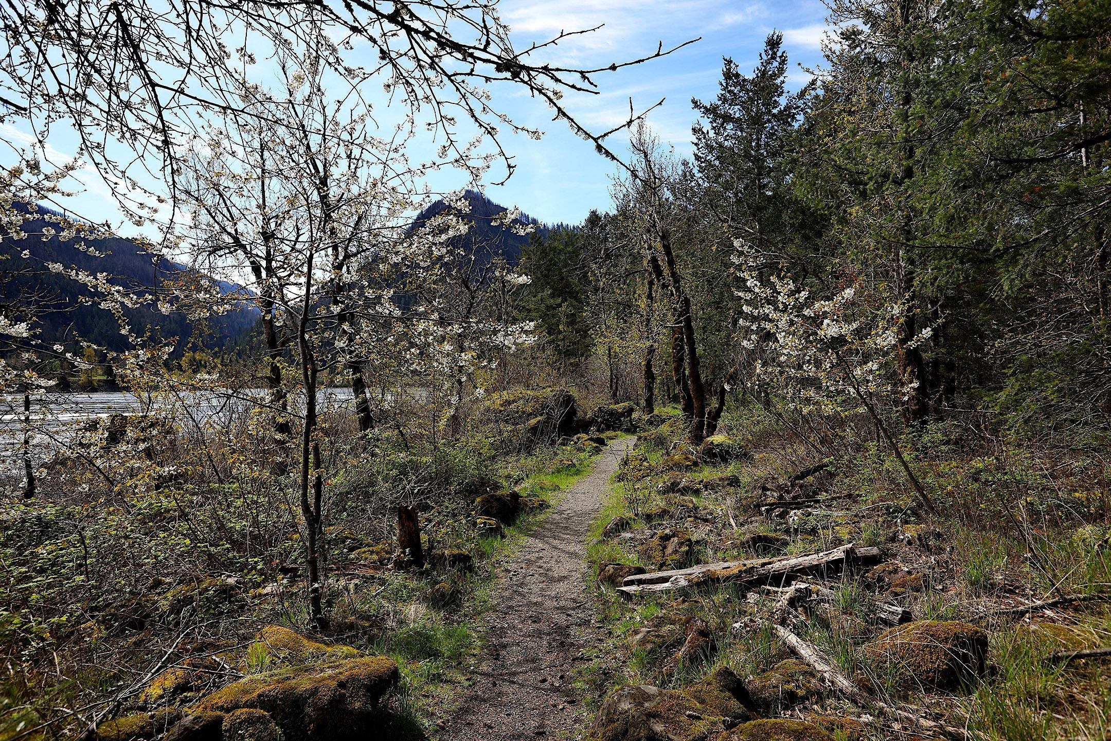 CANCELLED: Fort Cascades History Walk, WA