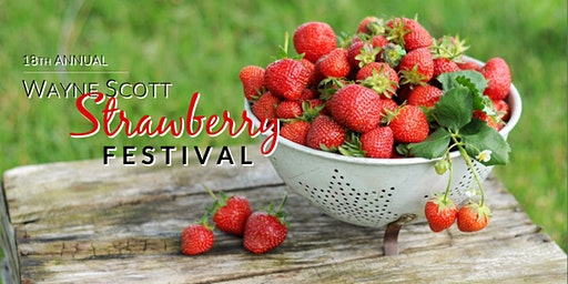 18th Annual Wayne Scott Strawberry Festival in Unicoi, Tennessee