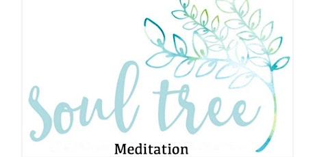 Beginner Meditation Course - Soul Tree Meditation tickets