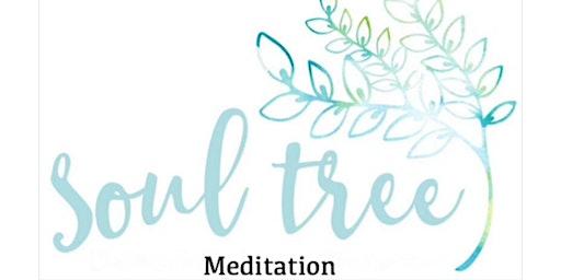 Beginner Meditation Course - Soul Tree Meditation
