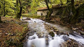 Πεζοπορία στο Χελμό & Πλανητέρο-Πηγές Αροάνιου Ποταμού