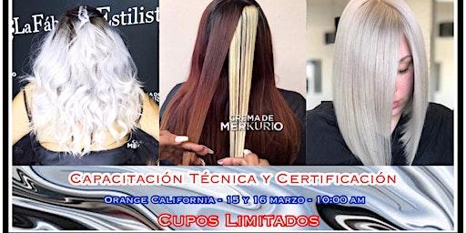 Crema de MERKURIO Capacitación Técnica y Certificación