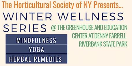 Winter Wellness Series | Mindfulness Meditation w/ Jean-Sebastien tickets