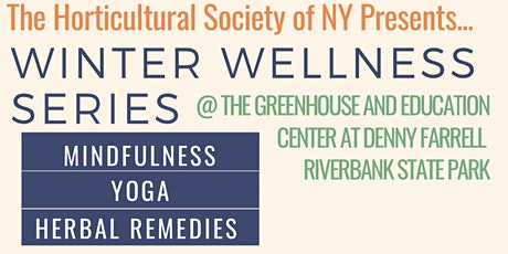 Winter Wellness Series | Herbal Remedies w/ Arvolyn Hill tickets