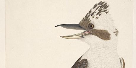Scholar Talk: Birds through art tickets