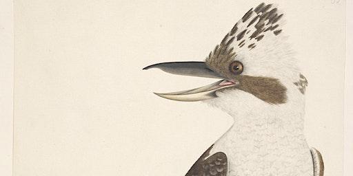 Scholar Talk: Birds through art