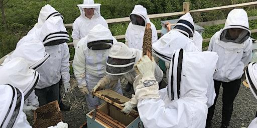Beekeeping School 2020 - Greenwich Audubon Center