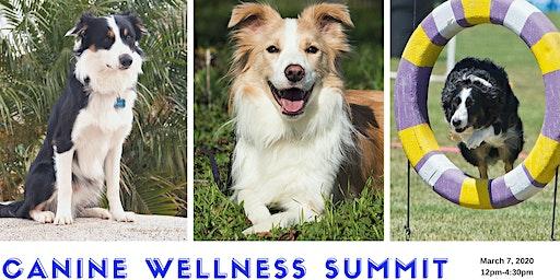 Canine Wellness Summit