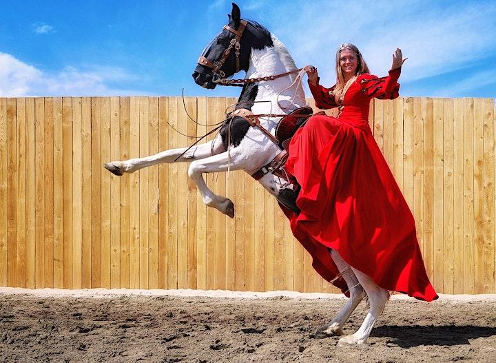Image pour Histoire et humour - 10.000 ans l'homme et le cheval