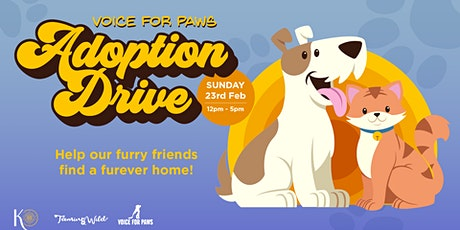 Voice For Paws Adoption Drive at Knowhere tickets