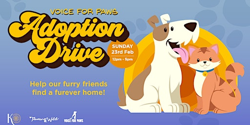 Voice For Paws Adoption Drive at Knowhere