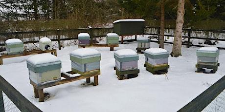 Winter Colony Preparation Workshop tickets