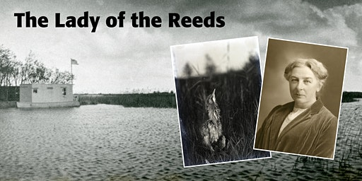 Talk by James Parry: 'The Lady of the Reeds: Bird photographer Emma Turner'