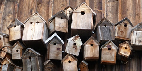Kid's Build a Bird Box Workshop tickets
