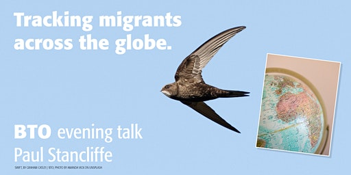 Tracking migrants across the globe - a BTO talk by Paul Stancliffe