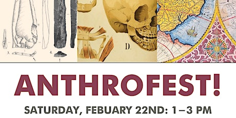 Anthrofest! Exploring the Fascinating Field of Anthropology tickets