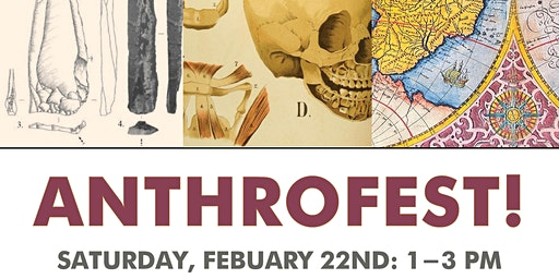 Anthrofest! Exploring the Fascinating Field of Anthropology