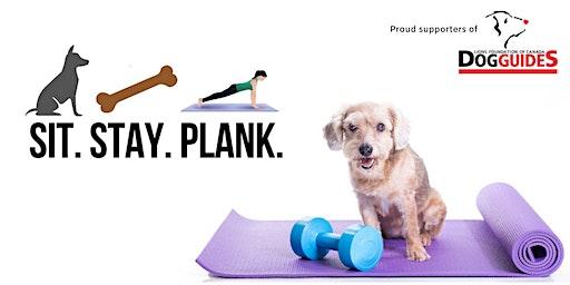 Sit. Stay. Plank.