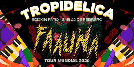 Tropidelica con Faauna - Edición Patio entradas