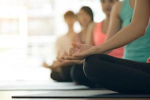 Beginner Friendly Hatha yoga.