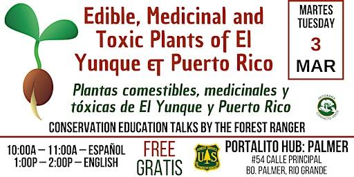 Plantas comestibles, medicinales y tóxicas de El Yunque y Puerto Rico