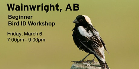 Wainwright AB - Beginner Bird ID Workshop tickets