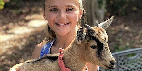 Beginner Goat Yoga-Gentle Flow tickets