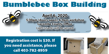 Bumblebee Box Building Workshop tickets