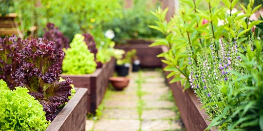 Raised Bed Gardening Workshop-  Wednesday April 15, 2020 at County Parks Shop