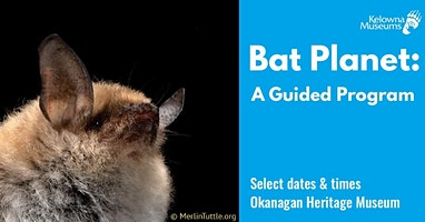 Bat Planet: A Guided Program