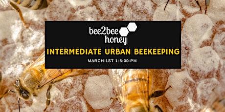 Intermediate Urban Beekeeping tickets