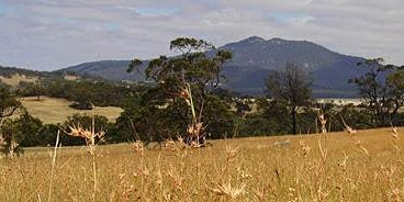 Managing pastures in a changing climate