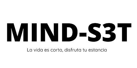 MIND-S3T boletos