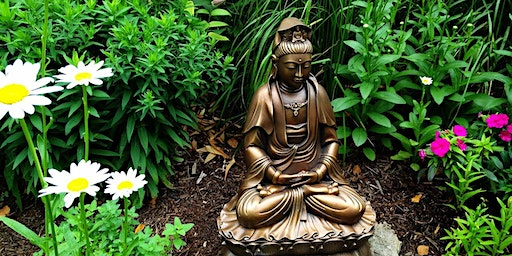 Releasing Stress to Find Inner Harmony