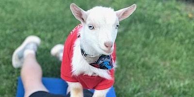 Goat Yoga Nashville- Luck O' the Goat
