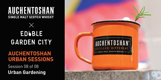 Auchentoshan Born & Raised In The City : Auchentoshan Urban Session #8