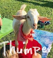 Goat Yoga Nashville- Easter Goat Yoga & Bunny Yoga