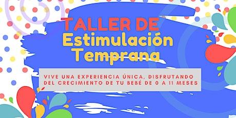 TALLER DE ESTIMULACIÓN  TEMPRANA NIVEL 1 Y 2 boletos