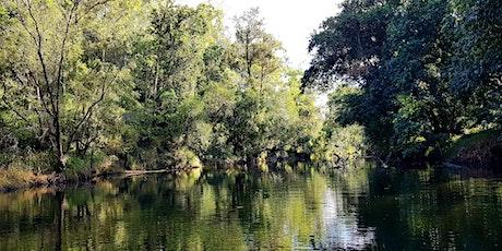 Wildlife Talk - Mary River Cod with Tom Espinoza - Maryborough Library tickets