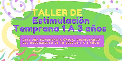 TALLER DE ESTIMULACIÓN  TEMPRANA  NIVEL 3 Y 4