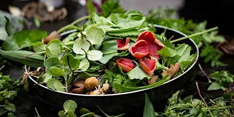Spring Wild Food  Foray in Sutton Park tickets