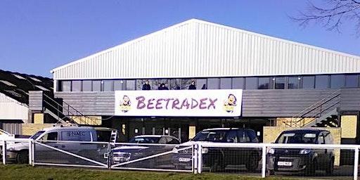 Beetradex 2020